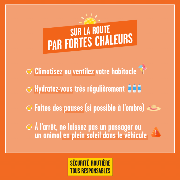 checklist canicule